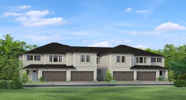 4910 San Martino Drive, Wesley Chapel, FL 33543 (MLS #T3183702) :: The Figueroa Team