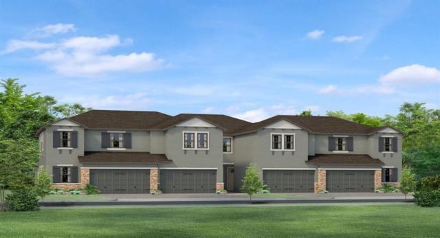 4896 San Martino Drive, Wesley Chapel, FL 33543 (MLS #T3183710) :: The Figueroa Team
