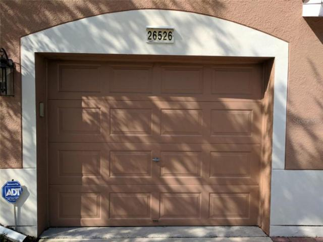 26526 Chimney Spire Lane, Wesley Chapel, FL 33544 (MLS #T3183849) :: Lovitch Realty Group, LLC