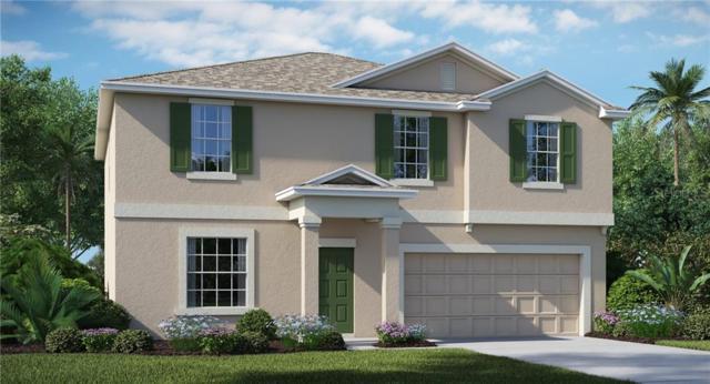 6898 Emerald Spring Loop, New Port Richey, FL 34653 (MLS #T3183999) :: Team 54