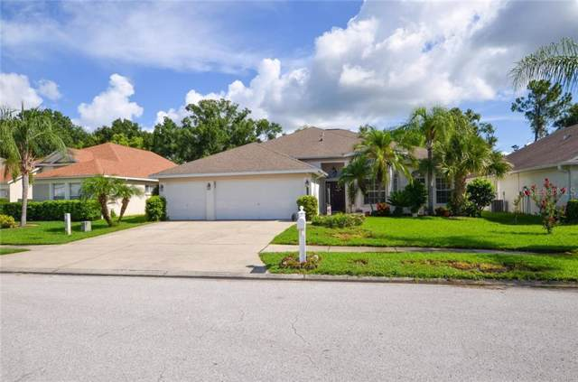 23215 Emerson Way, Land O Lakes, FL 34639 (MLS #T3184013) :: Bustamante Real Estate