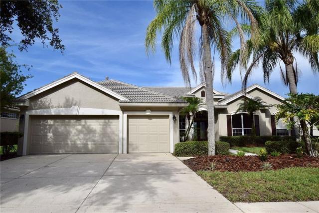 10213 Estuary Drive, Tampa, FL 33647 (MLS #T3184212) :: Cartwright Realty