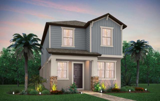 12012 Ruddy Run, Odessa, FL 33556 (MLS #T3184330) :: Team Bohannon Keller Williams, Tampa Properties
