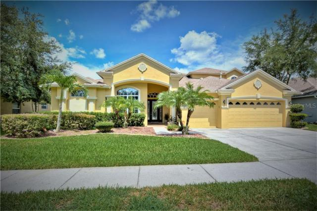 3010 Marble Crest Drive, Land O Lakes, FL 34638 (MLS #T3184507) :: Team 54