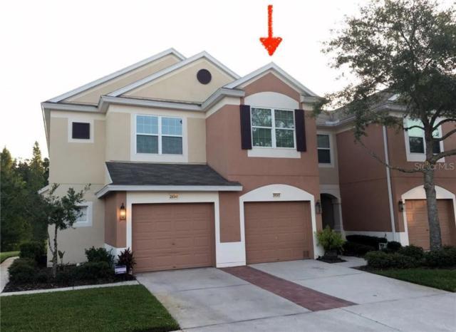 26543 Castleview Way, Wesley Chapel, FL 33544 (MLS #T3184515) :: Lovitch Realty Group, LLC