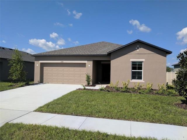 12445 Chaya Court, Spring Hill, FL 34610 (MLS #T3184525) :: Jeff Borham & Associates at Keller Williams Realty