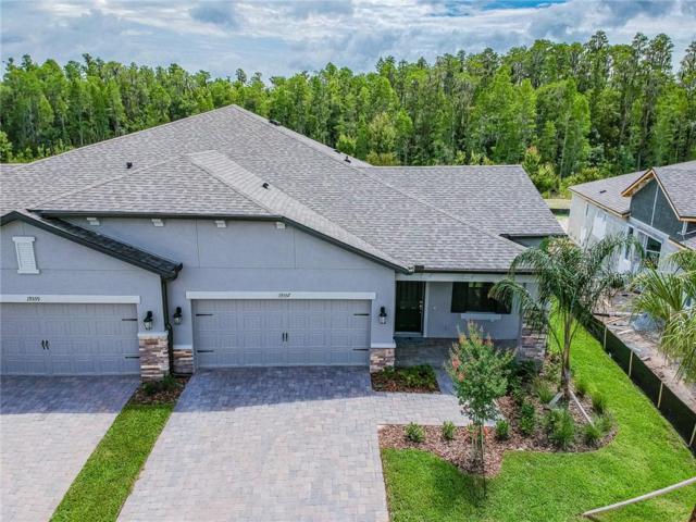 19359 Hawk Valley Drive, Tampa, FL 33647 (MLS #T3184541) :: Florida Real Estate Sellers at Keller Williams Realty
