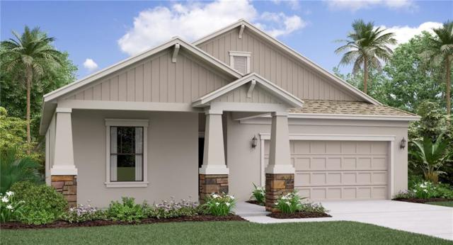 9644 Ivory Drive, Ruskin, FL 33573 (MLS #T3184564) :: Griffin Group