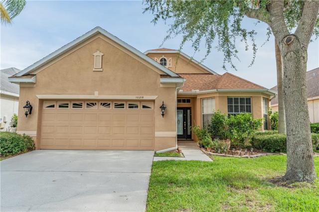 10215 Evergreen Hill Drive, Tampa, FL 33647 (MLS #T3184581) :: Cartwright Realty