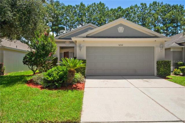 5232 Gato Del Sol Circle, Wesley Chapel, FL 33544 (MLS #T3184624) :: Delgado Home Team at Keller Williams