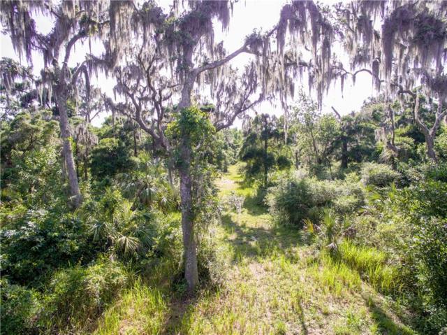 9715 Brantley Rd Road, Lithia, FL 33547 (MLS #T3184705) :: Team Bohannon Keller Williams, Tampa Properties