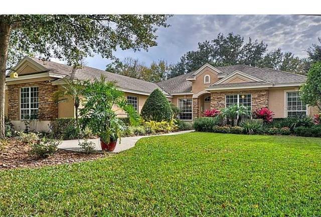 6025 Audubon Manor Boulevard, Lithia, FL 33547 (MLS #T3184742) :: Team Bohannon Keller Williams, Tampa Properties