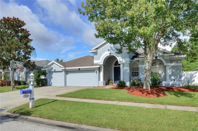 4329 Waterford Landing Drive, Lutz, FL 33558 (MLS #T3184764) :: Bridge Realty Group
