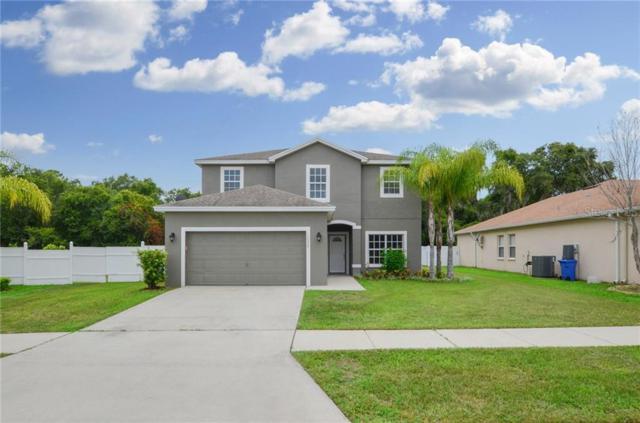 10620 Carloway Hills Drive, Wimauma, FL 33598 (MLS #T3184867) :: Team Bohannon Keller Williams, Tampa Properties