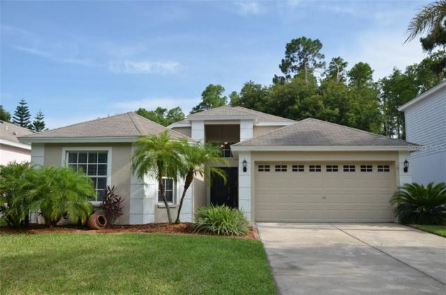 13445 Staghorn Road, Tampa, FL 33626 (MLS #T3184899) :: The Duncan Duo Team