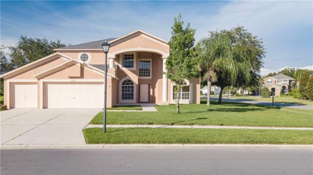 16201 Carnoustie Drive, Odessa, FL 33556 (MLS #T3184948) :: Cartwright Realty