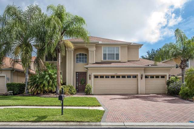27339 Silver Thatch Drive, Wesley Chapel, FL 33544 (MLS #T3184967) :: Griffin Group