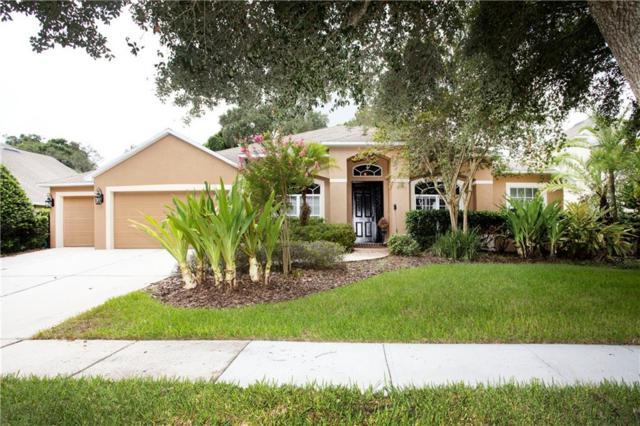 311 Golden Elm Drive, Seffner, FL 33584 (MLS #T3184981) :: Jeff Borham & Associates at Keller Williams Realty