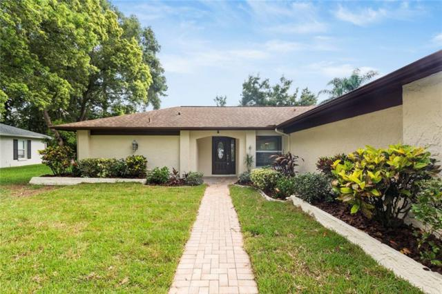 3305 E Dorchester Drive, Palm Harbor, FL 34684 (MLS #T3185003) :: Cartwright Realty
