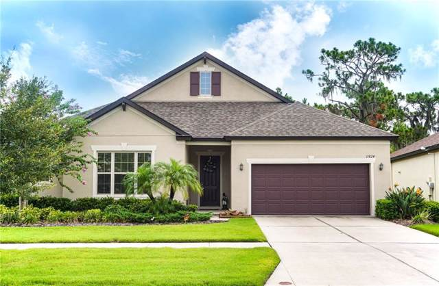 11824 Cross Vine Drive, Riverview, FL 33579 (MLS #T3185009) :: Team 54