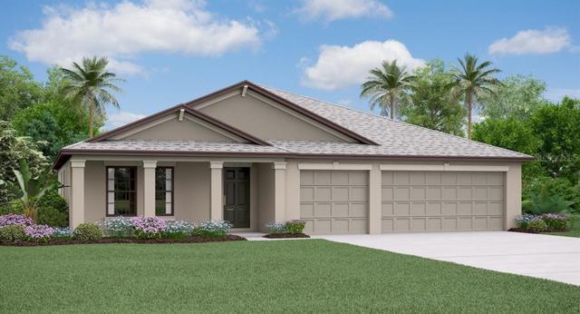6365 Cobble Bliss Street, Zephyrhills, FL 33541 (MLS #T3185037) :: Cartwright Realty