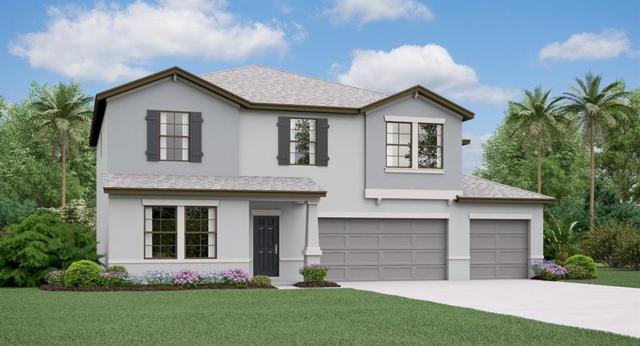 6315 Cobble Bliss Street, Zephyrhills, FL 33541 (MLS #T3185059) :: Cartwright Realty
