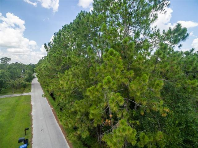 27225 White Water Lane, Wesley Chapel, FL 33544 (MLS #T3185105) :: Griffin Group