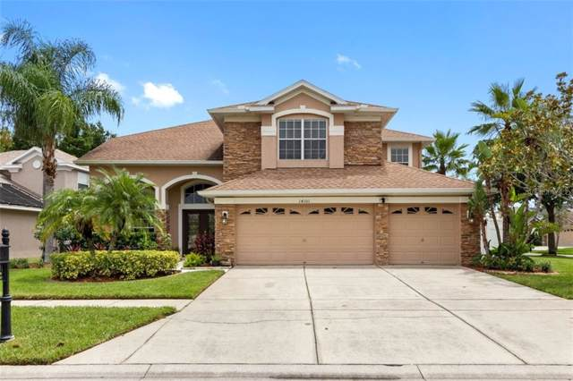 14101 Lincolnshire Court, Tampa, FL 33626 (MLS #T3185202) :: Cartwright Realty