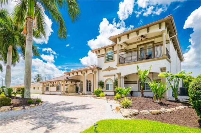 842 Miramar Court, Cape Coral, FL 33904 (MLS #T3185221) :: Team 54