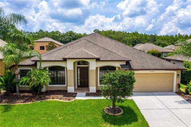 14828 Princewood Lane, Land O Lakes, FL 34638 (MLS #T3185282) :: Cartwright Realty