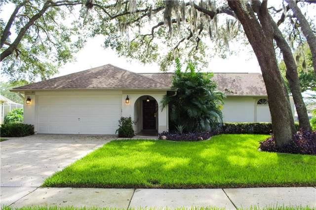 19601 Wyndmill Circle, Odessa, FL 33556 (MLS #T3185315) :: Jeff Borham & Associates at Keller Williams Realty