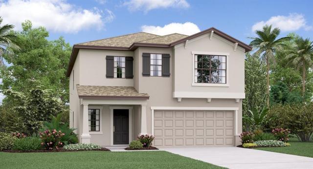 14859 Crescent Rock Drive, Wimauma, FL 33598 (MLS #T3185352) :: Team Bohannon Keller Williams, Tampa Properties