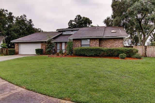 9213 Kingsridge Drive, Temple Terrace, FL 33637 (MLS #T3185434) :: Jeff Borham & Associates at Keller Williams Realty