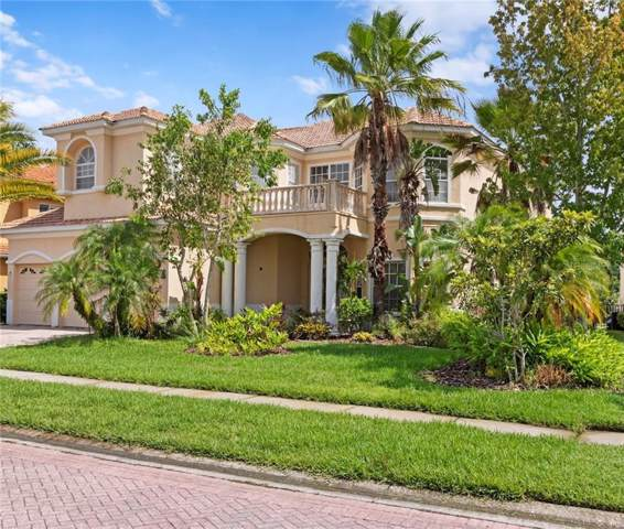 10526 Martinique Isle Drive, Tampa, FL 33647 (MLS #T3185482) :: Cartwright Realty