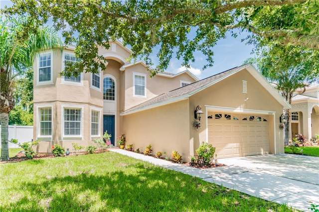 12252 Southbridge Terrace, Hudson, FL 34669 (MLS #T3185511) :: Team 54