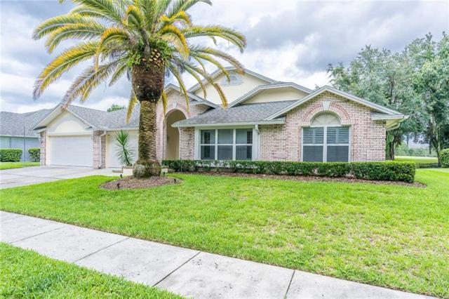 17515 Edinburgh Drive, Tampa, FL 33647 (MLS #T3185540) :: Cartwright Realty