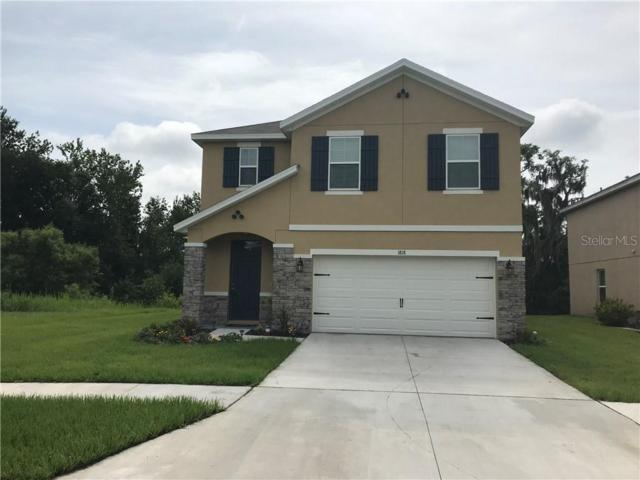 1818 Greenwood Valley Drive, Plant City, FL 33563 (MLS #T3185549) :: The Duncan Duo Team