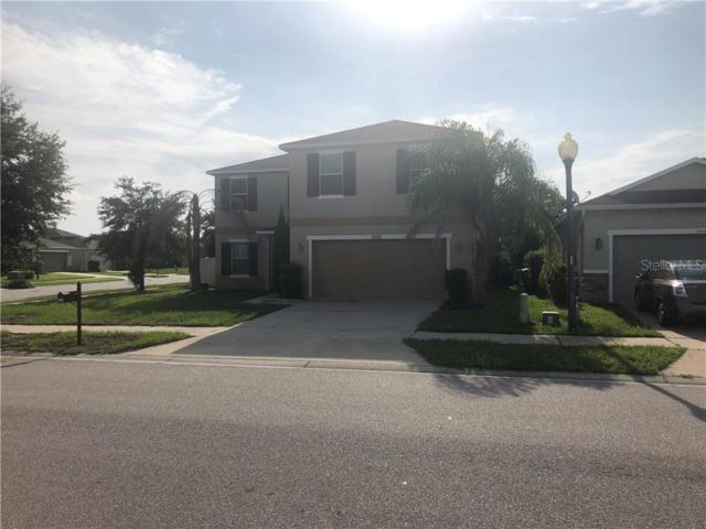5120 Ballark Street, Mount Dora, FL 32757 (MLS #T3185594) :: GO Realty