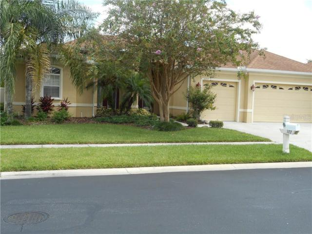 31717 Baymont Loop, Wesley Chapel, FL 33543 (MLS #T3185702) :: Team Bohannon Keller Williams, Tampa Properties