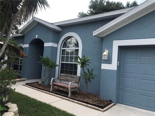 5219 Watson Road, Riverview, FL 33578 (MLS #T3185708) :: Team Bohannon Keller Williams, Tampa Properties