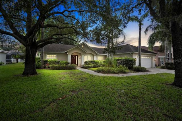 4019 Lithia Ridge Boulevard, Valrico, FL 33596 (MLS #T3185768) :: Team Bohannon Keller Williams, Tampa Properties
