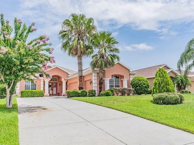 13342 Trailing Moss Drive, Dade City, FL 33525 (MLS #T3185824) :: Team Bohannon Keller Williams, Tampa Properties