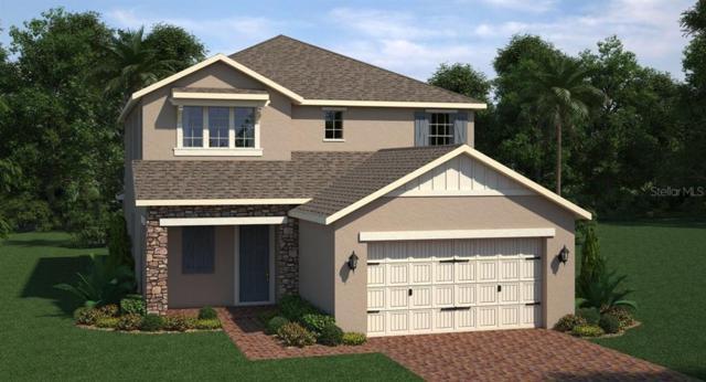 2838 Red Alder Boulevard, Ocoee, FL 34761 (MLS #T3185853) :: Team Bohannon Keller Williams, Tampa Properties