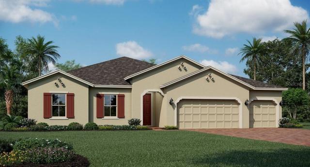 1674 Lake Sims, Ocoee, FL 34761 (MLS #T3185874) :: Team Bohannon Keller Williams, Tampa Properties