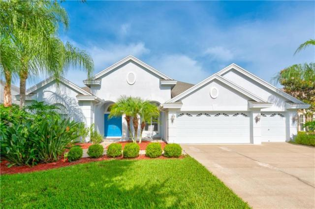 23453 Gracewood Circle, Land O Lakes, FL 34639 (MLS #T3185878) :: Bustamante Real Estate