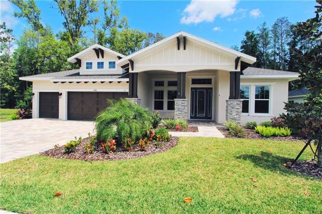 4006 Cove Lake Place, Land O Lakes, FL 34639 (MLS #T3186008) :: Cartwright Realty