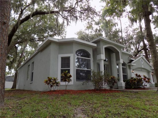 3727 Cold Creek Drive, Valrico, FL 33596 (MLS #T3186020) :: Mark and Joni Coulter | Better Homes and Gardens