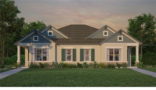 6220 Watercolor Drive, Lithia, FL 33547 (MLS #T3186099) :: Burwell Real Estate