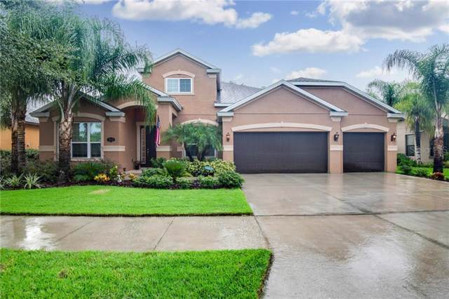 19123 Climbing Aster Drive, Tampa, FL 33647 (MLS #T3186106) :: Cartwright Realty