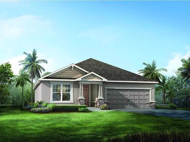 10638 Planer Picket Drive #32, Riverview, FL 33569 (MLS #T3186154) :: Jeff Borham & Associates at Keller Williams Realty